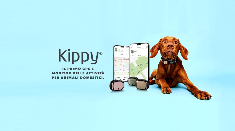 Kippy 2  | Mamacrowd