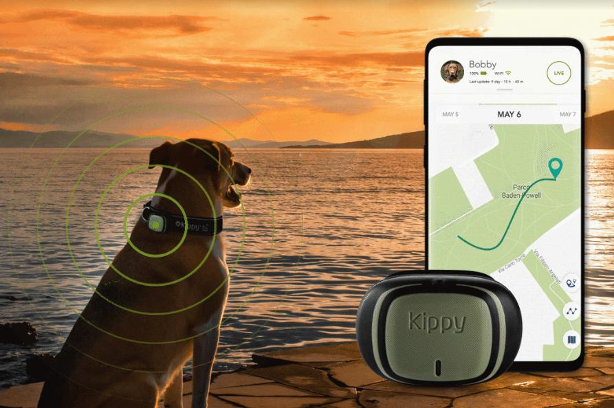 La tecnologia avanzata per la salute degli animali domestici